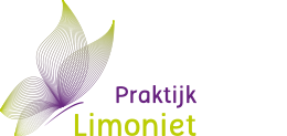 limoniet logo website.png